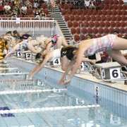 2014swimming01