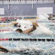 2014swimming02