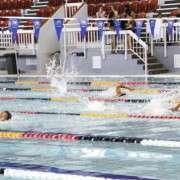 2014swimming06