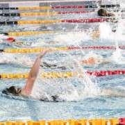 2014swimming20
